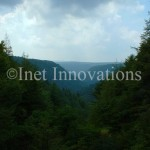 Allegheny Mountains | Image 1