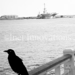 On Watch At Patriots Point | Image 3