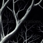 Tree Branches Sketch 3